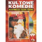 Hot Shots 2 (DVD)